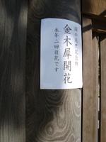 Misima01