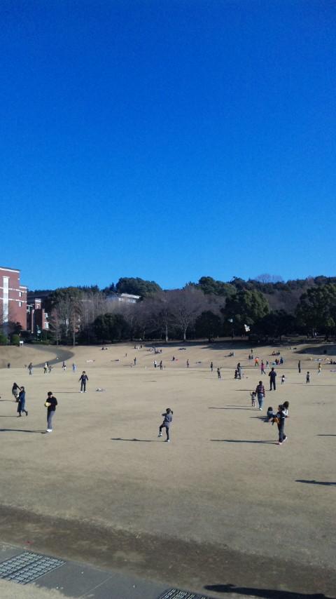 静岡の冬だなあ